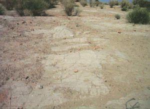 Mound of Vistro